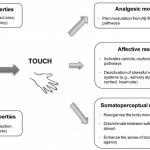 Types de stimulation de massage utilisés dans la thérapie biomécanique